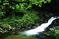 Fujihara, Nikko, Tochigi Prefecture 321-2521, Japan - panoramio - taro gen.jpg