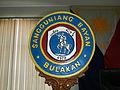FvfBulacan227.JPG