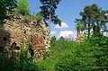 Górny zamek w Rożnowie 20140501 2577.jpg