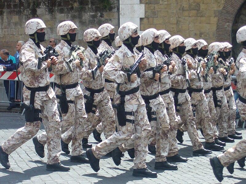 Task Force GIS