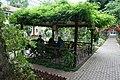 Garden in Cihangir.jpg