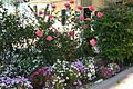 Garden of flowers.jpg