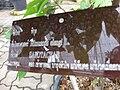Gardenology.org-IMG 7673 qsbg11mar.jpg