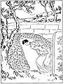 Garine - Contes coréens, adaptés par Persky, 1925 (page 125 cropped).jpg