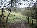 Gate on the byway to Coombe Manor - geograph.org.uk - 1765870.jpg