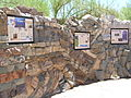 Geology Wall at Tohono Chul, Tucson.JPG