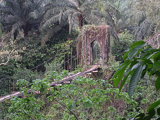 Mamfe,  Sud-Ouest, Камерун