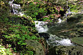 Gfp-new-york-adirondack-mountains-raging-brook.jpg