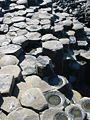 Giant's Causeway 2006 31.jpg