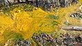 Gold Mold - panoramio.jpg