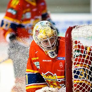 Matej Kristín - Matej Kristin as goalie for HKm Zvolen