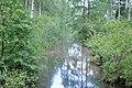 Grāvis, Olaines pagasts, Olaines novads, Latvia - panoramio (1).jpg