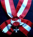 Grand Cross, Austrian Life-Rescue-Organisation (ÖLRG).png