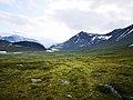 Grasslands and mountains in sarek.jpg