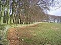 Grazing field - geograph.org.uk - 360457.jpg