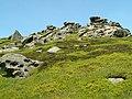 Grinah Stones - geograph.org.uk - 457767.jpg