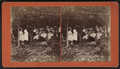 Group eating at table under trees, by E. M. Johnson.png