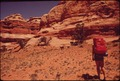 HIKER IN THE MAZE, A REMOTE AND RUGGED REGION IN THE HEART OF THE CANYONLANDS, ENCOUNTERS SOME CATTLE GRAZING. THIS... - NARA - 545766.tif