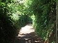 Hambeer Lane, Exeter - geograph.org.uk - 1320332.jpg