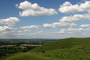 Tess of the d'Urbervilles - The Vale of Blackmore, the main setting for Tess. Hambledon Hill towards Stourton Tower