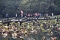 Hangzhou-Westsee-40-Wege-Menschen-2012-gje.jpg