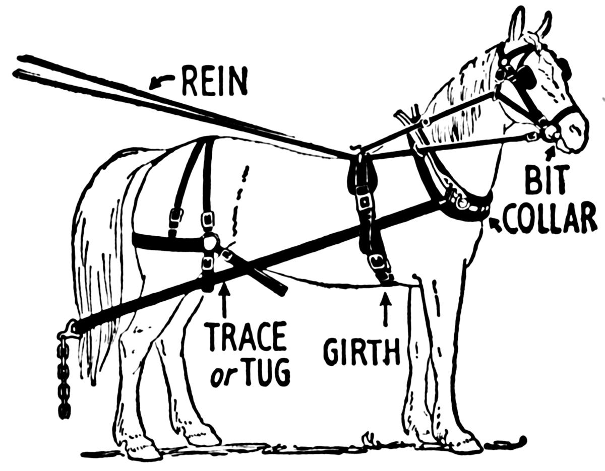 Horse harness - Wikipedia on