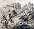 Hemkengrypern Reise-Vademecum 1795 a kl.jpg