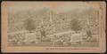 Henry Ward Beecher's grave, Greenwood Cemetery, N.Y., U.S.A, by Kilburn, B. W. (Benjamin West), 1827-1909 4.png