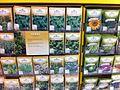 Herb Seed Packets.jpg