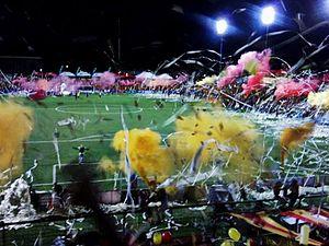 C.S. Herediano - The Eladio Rosabal Cordero stadium during the 2013 Verano final