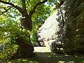 High Rocks Western Rocks 4143.JPG