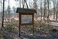 Hildener Heide 2016 069.jpg