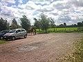 Horsemania Knesselare - panoramio (2).jpg