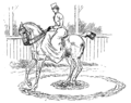 Horsemanship for Women 085.png
