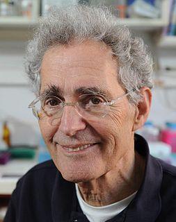 Howard Cedar Israeli American biochemist