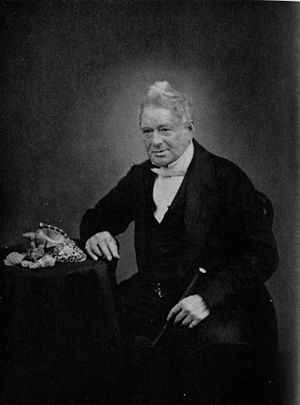 Hugh Cuming - A portrait of Hugh Cuming late in his life, with shells of some tropical species of sea snails on the table next to him