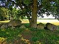 Hunebed in Drenthe 06 v2.jpg