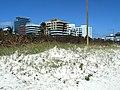 Hurricane Irma 2017 - Miami Beach - South Beach - Beach and Dune Vegetation South Pointe Park 07.jpg