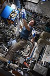 ISS-57 Anne Mcclain and Alexander Gerst work inside the Destiny lab.jpg