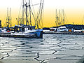 Iced In Harbor 72dpi.jpg