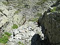 In Strunga Dracului - panoramio.jpg