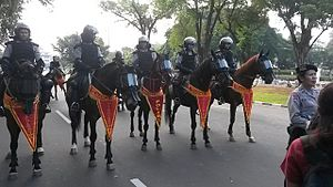 Mounted police - Indonesian mounted riot police in Jakarta