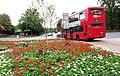 Inglaterraonibus.jpg
