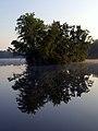 Island (Kemah Lake, NJ) (6143759704).jpg