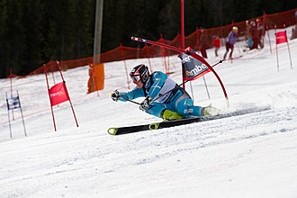 Giant slalom - A skier attacks a gate in GS