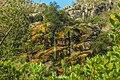 Jaboticatubas - State of Minas Gerais, Brazil - panoramio (86).jpg