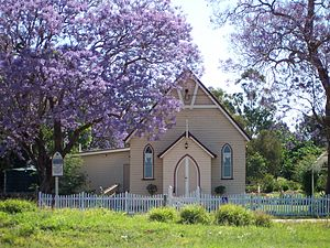 Jacaranda mimosifolia - Church surrounded by jacarandas in bloom, Wooroolin, Australia