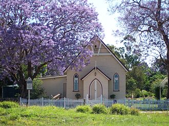Jacaranda mimosifolia - Church surrounded by jacarandas in bloom, Wooroolin, Australia