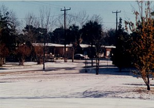 Climate of Florida - Snow in Jacksonville on December 23, 1989
