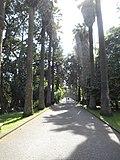 Jardim Botânico (27202606175).jpg